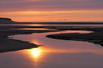 Texel / Niederlande