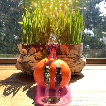 猫草の前のミカンの上でウルトラマンゼロが儀式を執り行っている図。双子の仮面ライダーの結婚。