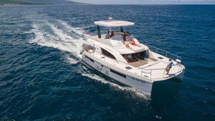 catamaran de luxe pour des sorties d'observation des baleines et des dauphins sous l'eau