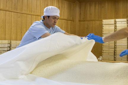 いよいよ麹蓋に盛り分けていく。作業中、水分や品温を保つために布をかける。