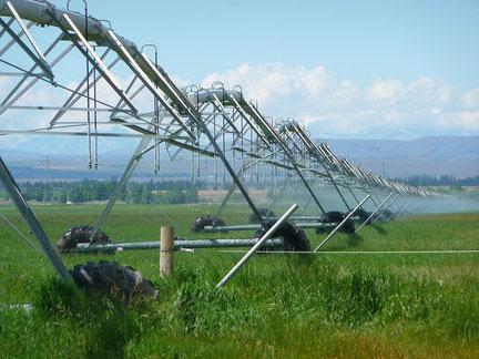 irrigation pilotée avec les sondes SENTEK - distribuées par Agralis