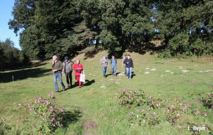 NABU-Mitglieder laufen über eine Weide