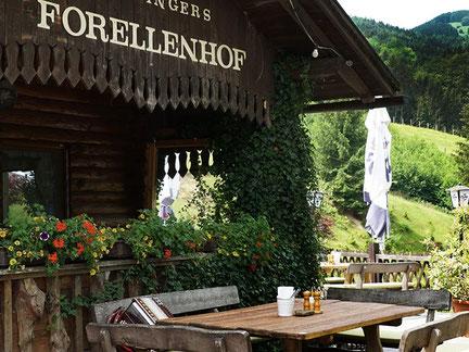 Gasthof Forellenhof Holzinger