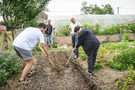 permaculture garden in burgundy formation longue stage permaculture dans un jardin