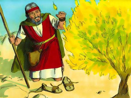 40 ans après avoir quitté l'Egypte, Dieu se fait connaitre à Moïse au travers d'un buisson ardent