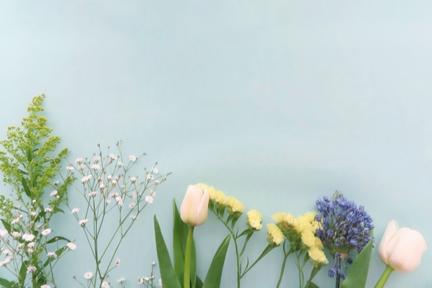 ミモザ、カスミソウ、チューリップ、スターチスの花。
