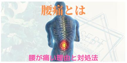 腰痛 腰 痛み 治療 整体