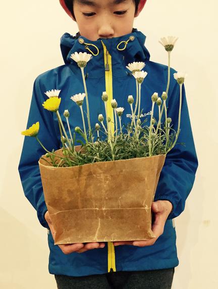 この花超カワイイでしょう♪ 昨日いただきました。 マーガレットに似てますけど「ローダンセマム」って花です。 (黄色いのは?) シルバーの葉も軟らかでいいですね~♪ 袋にも超似合ってるからこのまま育てたいくらい♪ *&プレミアム風にww