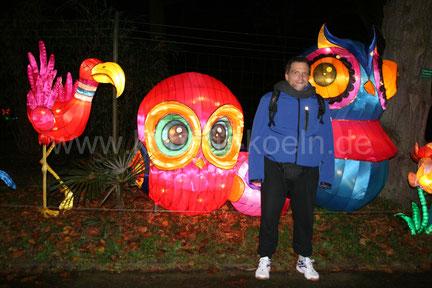 Farbenpracht beim China Licht Festival 2017