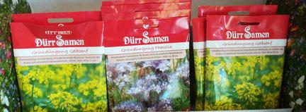 Samen für Gründüngungspflanzen erhalten Sie bei Blumen Grünschnabel in Trossingen