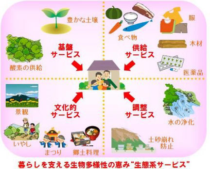 出典:札幌市「生物多様性の保全」ホームページからのイラスト