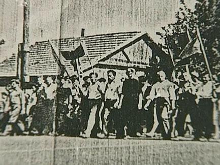 Новочеркасск 1962, новочеркасский расстрел, новочеркасская голгофа,