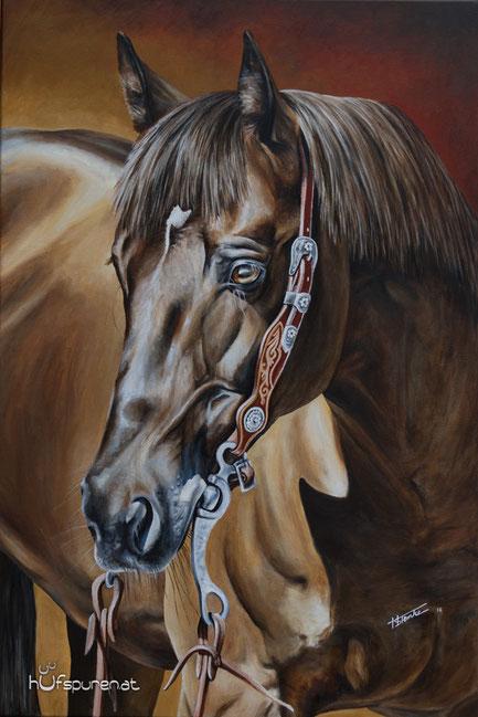 """Quarter Horse """"Topsail Chex Delmaso"""", Acyl auf Leinwand, 90x60, 2016, Pferdemalerei von Hanna Stemke/Hufspuren"""