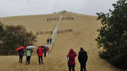 Donnerstag: In Pilat erklimmen wir die hoch gelegenen Dünen, an diesem Tag leider bei Regen und starkem Wind.