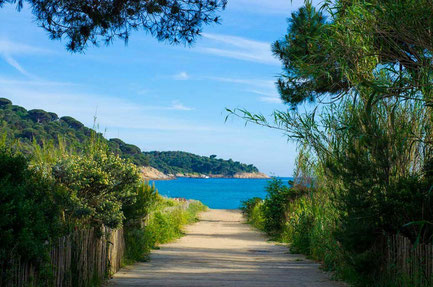 Saint-Tropez top things to do - Beach - Copyright Steve Lorillere