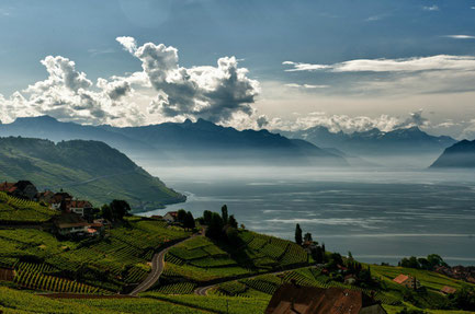Montreux top things to do - Lavaux UNESCO - Copyright  Gustave Deghilage