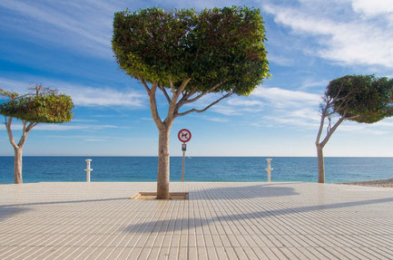 Valencia top things to do - Valencia Beach - Copyright  Terje Enge