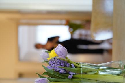tcm, traditionelle chinesische medizin, basel, akupunktur, tuina massage, behandlung, therapie, baselstadt, praxis, meyo house, yoga, rueckenschmerzen, verspannung, schröpfen, moxa, ernährung, pms, schwangerschaft, verdauungsbeschwerden, kopfschmerzen,