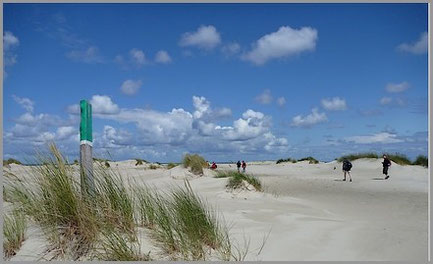 von der Möwendüne zum Strand