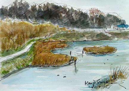 県立境川遊水地公園のビオトープ
