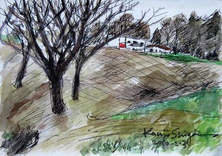 横浜市・県立境川遊水地公園付近の丘