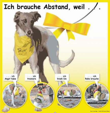 Gelbe Hunde