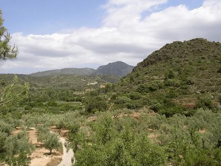 Parque Natural y protegido de la Sierra de Espadán, Castellón en la Comunitat Valenciana.