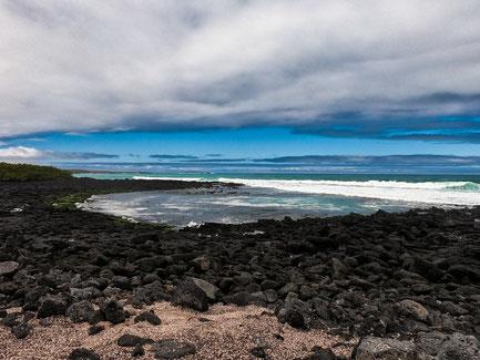 Follow Elli Reisebericht Weltreise Erfahrung Galapagos Inseln - Santa Cruz