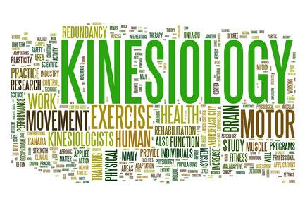 """Workshop """"Kinesiologie - teste selbst, was Dir gut tut"""""""