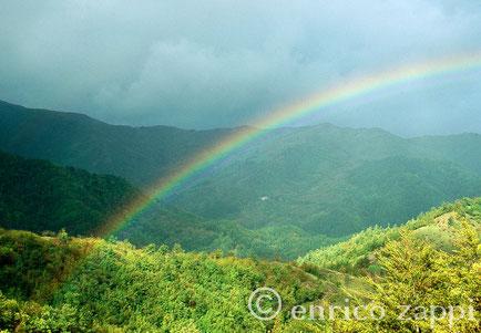 """L'arcobaleno,un fenomeno naturale che nella cultura popolare ha sempre significato il passaggio dal temporale,ormai finito,al sereno. Parco Nazionale delle Foreste Casentinesi: un arcobaleno di speranza """"in tutti i sensi"""" per l'inverno ormai alle porte."""