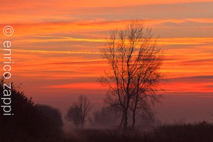 All'imbrunire Valle Mandriole s'ammanta d'un velo di nebbia che con i colori del dopo tramonto assume una cromia fatata.