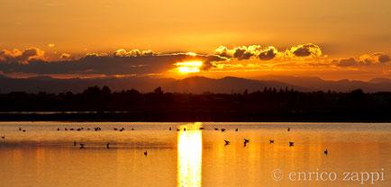 Saline di Cervia: uno degli innumerevoli meravigliosi tramonti che rendono questo ambiente naturale ancor più magico!
