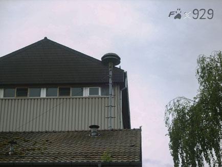 Landert MSL-3 Huttwil gegenüber Bahnhof