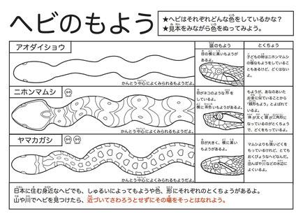 動物の塗り絵教材 古瀬研究室 帝京科学大学 環境教育インタープリ