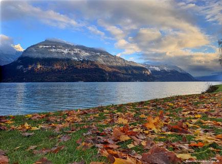 Mitte November 2016 vom Herbst in den Winter und wieder zurück