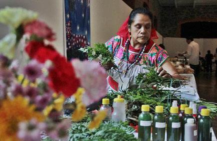 La Medicina Tradicional en México