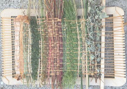 MICRO PLANT WEAVING