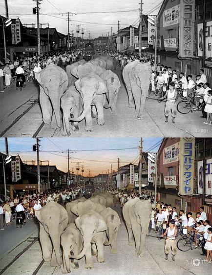 修復・色再現 作業前→作業後比較 1958(昭和33)年8月26日、金沢市本町の通り
