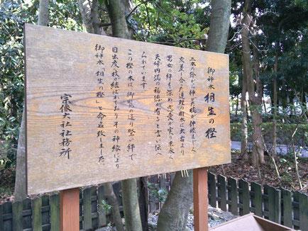 相生の樫の説明板の写真