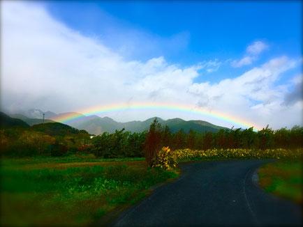 Beautiful rainbow 雨上がりのきれいな虹