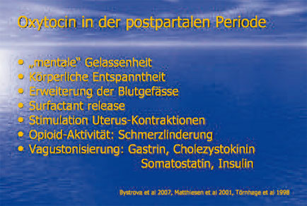 Abb. 9: Oxytocin-Wirkungen.