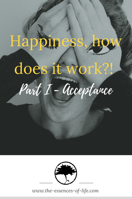 Happiness Luck happy acceptance the-essences-of-life.com
