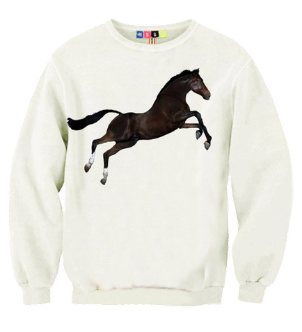 Beautiful Nightmare by MSGM and Toilet Paper Italy white horse sweater