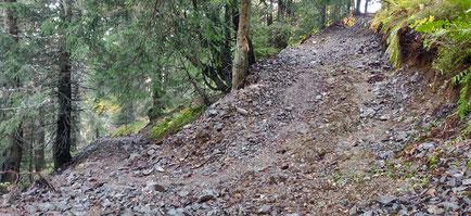sentier du Crozet transformé en piste de débardage