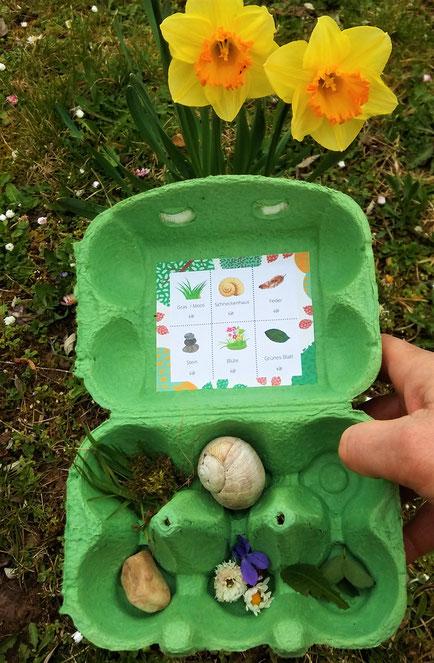 Natur-Bingo im Eierkarton - Upcycling