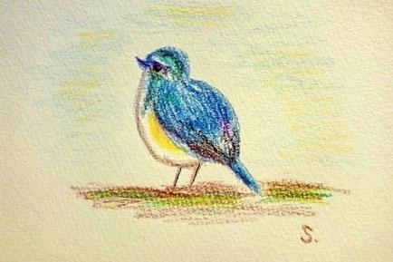 幸せの青い鳥でしょうか。。