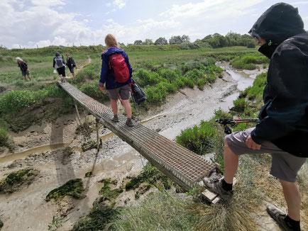 traversée la Baie de Somme avec votre guide nature