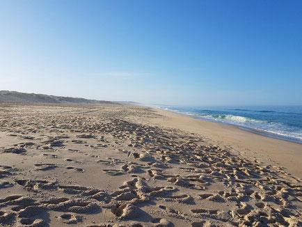 endloser feiner Sandstrand unter blauem Himmel bei Comporta, leichter Wellengang