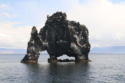 Hvitserkur-Felsen im Meer - Exklusive Islandsrundreise von My own Travel ©My own Travel