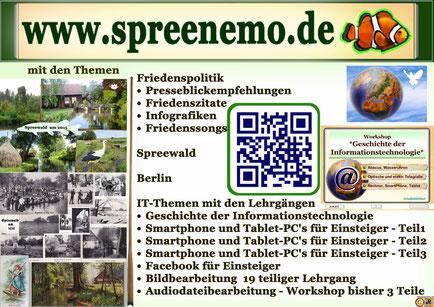 Infoflyer www.spreenemo.de